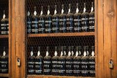 Museum - förvaringsrum av dyrt tappningvin Madera Royaltyfri Foto