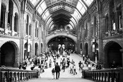 Museum In Dark Stock Photo