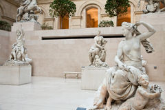 Free Museum Interior Royalty Free Stock Photo - 24238275