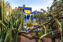 Museum of Islamic Art, painted in Majorelle Blue, at the Majorelle Garden in Marrakesh - Morocco Stock Photos