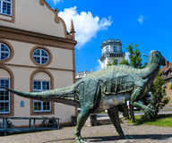 Museum of Natural History in Kassel, Germany Royalty Free Stock Photo