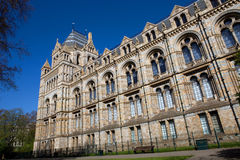 Museum natural history Stock Photo