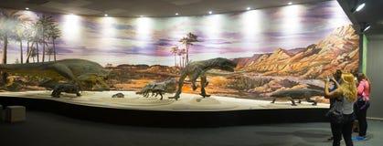 Museum of Natural Sciences in Ischigualasto. ISCHIGUALASTO, CHILE – FEBRUARY 12, 2017:  Dinosaur fossils on display in the Museum of Natural Sciences in Stock Photo