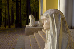 Museum nature reserve Tsaritsyno, Sphinxes Royalty Free Stock Images