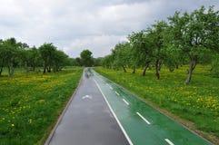 Museum-reserve Kolomenskoye in de lente na de regen De weg van de fiets royalty-vrije stock afbeelding