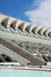 Museum of Sciences Principe Felipe in Valencia Royalty Free Stock Photo