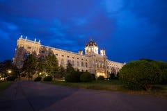 Museum van beeldende kunsten, Wenen Royalty-vrije Stock Afbeeldingen
