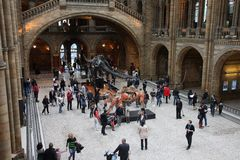 Museum visitors in London Stock Photography