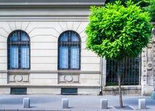 Museumsfassade und -fenster stockfotos