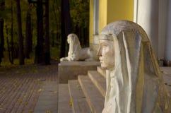 MuseumsNaturreservat Tsaritsyno, Sphinxe Lizenzfreie Stockbilder