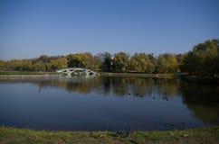 MuseumsNaturreservat Tsaritsyno, Teich Lizenzfreies Stockbild