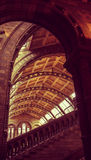 Museus de Londres - museu da história natural - Archs imagem de stock royalty free