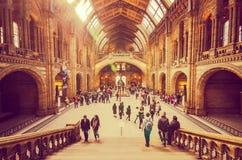 Museus de Londres - visitantes no museu da história natural fotografia de stock royalty free
