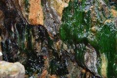 Musgo del agua de azufre en la roca fotografía de archivo