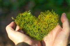 Musgo en forma de corazón a disposición Fotos de archivo libres de regalías