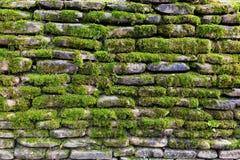 Musgo en la pared de piedra Fotos de archivo