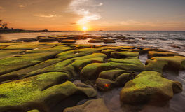 Musgo verde en la formación de roca y el fondo únicos de la puesta del sol Imagen de archivo