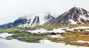 Musgo verde, montanhas nevado, ao sul de Islândia foto de stock royalty free