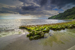 Musgos de la roca en la playa de Lombok, Indonesia fotografía de archivo libre de regalías