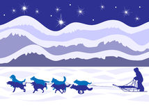 Musher и команда собаки лунным светом Стоковая Фотография