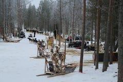 Musher läger nära finlandssvensk Lapland huvudstad Rovaniemi Arkivfoto