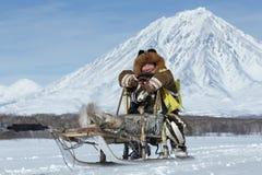 Musher Mandyatov di Kamchatka romano Corse dei cani Beringia, tazza russa della slitta di Kamchatka delle discipline della neve d Immagine Stock