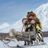 Musher Roman Mandyatov di Kamchatka Corse dei cani Beringia della slitta di Kamchatka Immagini Stock Libere da Diritti