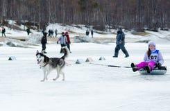 Mushing chez Baikal pêchant 2012 images stock