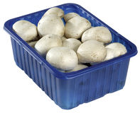 Mushroms. A blue plastic container of button mushrooms sits isolated against a white background Stock Images
