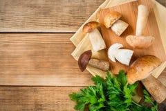 Mushroms del boleto con perejil en tablero cuting en fondo de madera rústico Imagenes de archivo