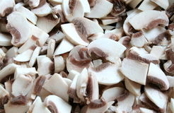 Mushroom. Lots of uncooked and cutted champignon mushrooms Stock Photos