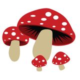 Mushroom. Cute and cartoony illustration of mushrooms. available in vector format royalty free illustration