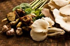 Mushroom. And thai herb on basketwork Stock Image