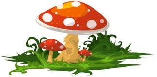 Mushroom. Illustration of isolated mushroom on white backgrond Stock Illustration