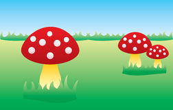 Mushroom. A vector illustration of three red mushrooms at the green filed Royalty Free Stock Images