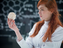 Mushroom analysis. Close-up of a student analyzing mushrooms in a chemisty lab with a blackboard on the background stock photography