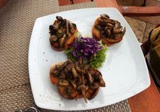 Mushroom appetizers with green lettuce and red cabbage stock photography