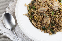 Mushroom Barley Meal Royalty Free Stock Images