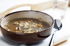 Mushroom Barley Soup Royalty Free Stock Image