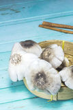 Mushroom basket mackerel Stock Images