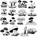 Mushroom black collection. Vector black collection of different mushrooms, over white background royalty free illustration