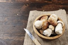 Mushroom Boletus on burlap. Mushroom Boletus in a bowl  on burlap with knife over Wooden Background. Autumn Mushrooms Stock Image