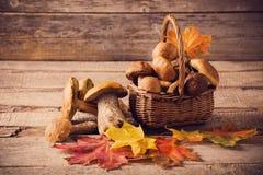 Mushroom Boletus over old Wooden background Stock Photo