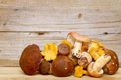 Mushroom Boletus over Wooden Background. Autumn Royalty Free Stock Photos