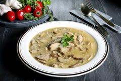 Mushroom boletus soup Royalty Free Stock Images