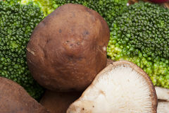 Mushroom and broccoli Stock Image