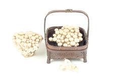 Mushroom and brown  basket white background Royalty Free Stock Images