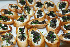 Mushroom Bruschetta (Brushetta) Cream Stock Image