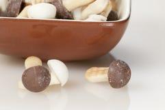 Mushroom cakes Stock Image