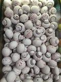 Mushroom candies. A shot of white mushroom candies taken at the spice bazaar in Istanbul, Turkey Stock Photos
